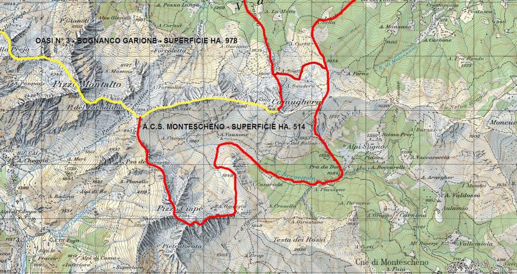 ACS Montescheno